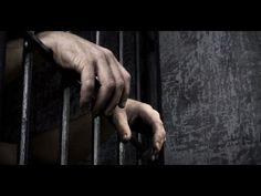 ¿Sabías por qué las cárceles de Holanda están quedándose vacías? - YouTube