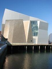 New England Aquarium, Boston. September.