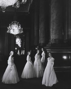 Maids of Honour shot by Cecil Beaton at the coronation of Queen Elizabeth II
