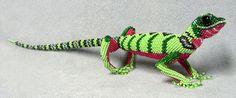 Beaded Lizards from Guatemala
