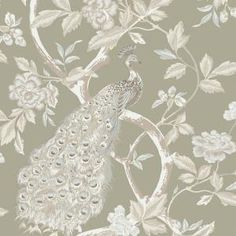 The Wallpaper Company 56 sq. ft. Ivory and Pewter Peacocks and Vines Wallpaper - Model # WC1281859 at The Home Depot