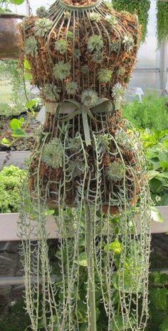 Succulent Dress Form Garden Junk, Garden Deco, Garden Art, Succulents In Containers, Planting Succulents, Chicken Wire Crafts, Succulent Gardening, Flower Planters, Garden Ornaments