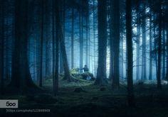 Blue by hipydeus  bavaria bayern blau blue fog forest mist nebel trees wald Blue hipydeus