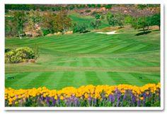 Book your next golf outing at San Diego's best golf courses near Estancia La Jolla - Estancia La Jolla Hotel & Spa