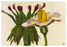 Sarah Graham, artist, botanical works on paper, 2008 to present. Botanical Drawings, Botanical Illustration, Botanical Prints, Sarah Graham Artist, Watercolor Flowers, Watercolor Art, Conceptual Drawing, Collage Drawing, Flower Artists