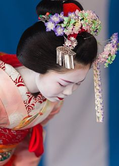 Maiko bowing - Maikos wear several elaborate hair ornaments, or kanzashi, such as fan or ball-shaped ornaments and combs. There is also the hana–kanzashi – an ornament with silk flowers dangling from the maiko's head to her chin.  While this is one of the most recognisable hair ornaments, it is only worn during the first year Minarai stage of a maiko's training. In contrast, geisha wear simpler ornaments or decorative combs in their hair.