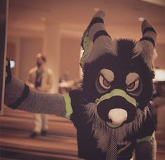 """Tayerr is on my list of """"favourite fursuiters"""""""