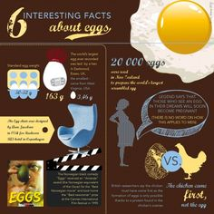 More facts about eggs!