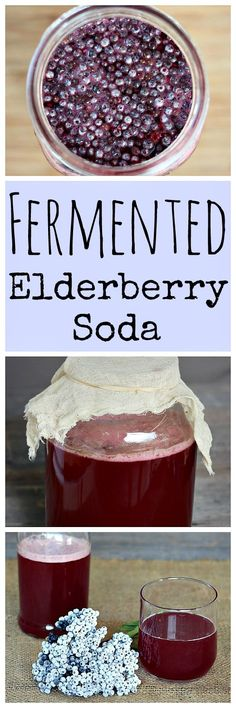 How to make your own homemade fermented elderberry soda with ginger and honey from wild foraged elderberries! How to make your own homemade fermented elderberry soda with ginger and honey from wild foraged elderberries! Fermentation Recipes, Canning Recipes, Probiotic Foods, Fermented Foods, Ginger And Honey, Ginger Bug, Kombucha, Yummy Drinks, Healthy Drinks