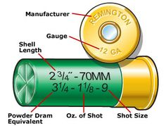 Information to be found on the headstamp of a shotshell (South Carolina Hunter Safety Course)