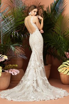 """Wtoo by Watters Wedding Dresses Fall """"At First Sight"""" Bridal Collection Wtoo by Watters Wedding Dress Collection Fall 2018 – Viola Sheer Wedding Dress, Fit And Flare Wedding Dress, Lace Mermaid Wedding Dress, Backless Wedding, Fall Wedding Dresses, Bridal Dresses, Wedding Gowns, Lace Wedding, Long Sleeve Wedding"""