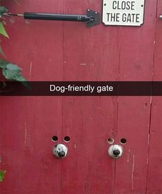 Funniest Pictures To Make You Laugh Uncontrollably - 18