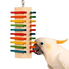Two Side Slide Parrot Toy - Medium A rainbow of coloured wood slats attached to one big wood block, creates numerous chewing and exercise options for your medium to large Parrot.
