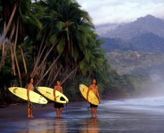 Have you ever imagine a perfect vacations? Sea, sun, fun and what more but learning to surf and enjoying the warm water in the tropics! Make your vCa memorable with GioTours! www.giotours.com #giotours #costarica #travel #vacation #vacations #vacaciones #water #surf #sea #tropics #sun #sand #fun