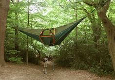 Beyond tent hammocks. Tentsile Tents Take Things Off The Ground!