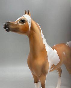 Gratuitous head shot🤩 Horse Portrait, Brisbane Australia, Horses For Sale, Glazed Ceramic, Pony, Pottery, Ceramics, Pony Horse, Ceramica