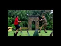 What is Better: Hung Ga or Wing Chun?