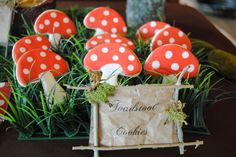 Toadstool Cookies at a Woodland Party #woodland #partycookies