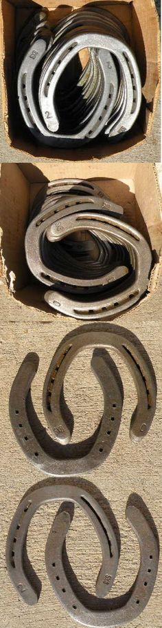 Hoof Rasps and Farrier Tools 183404: Kerckhaert Sx8 Steel Hind Horseshoes – 29 Pair – Unused -> BUY IT NOW ONLY: $79 on eBay!
