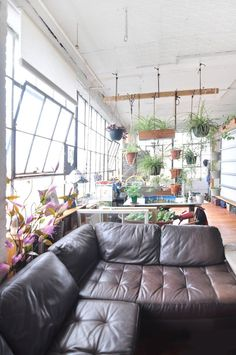 Carlos' Custom DIY Loft. I love the way the plants are used as a sort of room divider!