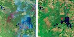 Mapping the World with Landsat