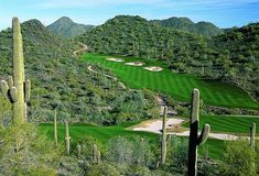 Quintero Golf and Country Club - These Golf Courses are part of the Sonoran Suites Golf Packages & Courses in Scottsdale, Arizona that are available to you, your family, friends or corporate groups. Sonoran Suites offers premier vacation condo rentals and golf vacation packages in Scottsdale, Phoenix, Tucson, San Diego, Palm Springs, Las Vegas and Mesquite!  Call us today at 1-888-786-7848 and let our professional golf staff book the best golf vacation possible! www.sonoransuites.com