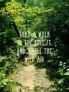 ☮ American Hippie ☮ A walk in the forest