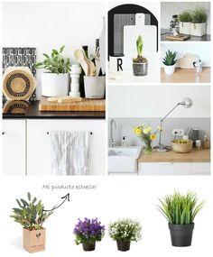 nordic kitchen flowers plants : via MIBLOG