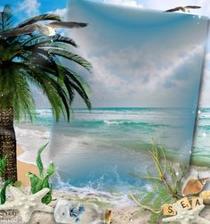 Photo Background Images, Frame Background, Photo Backgrounds, Picture Borders, Gold Picture Frames, Digital Photo Frame, Beach Wallpaper, Frame Clipart, Borders And Frames