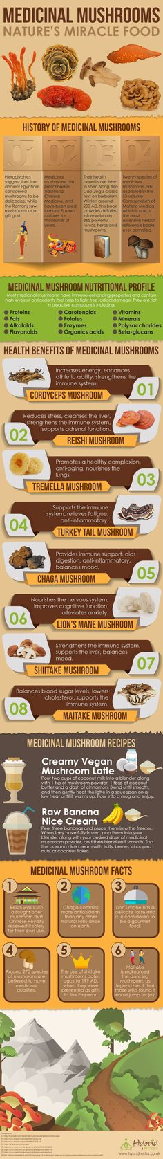 Medicinal Mushroom Health Benefits Infographic: Nature's Miracle Foods by angelina Health Benefits Of Mushrooms, Mushroom Benefits, Herbal Remedies, Health Remedies, Natural Remedies, Vegan Nutrition, Holistic Nutrition, Healing Herbs, Medicinal Herbs
