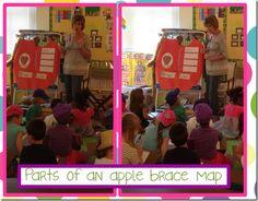 Apple Brace Map