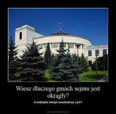 cytaty o polsce - Szukaj w Google Funny Pics, Funny Pictures, Funny Memes, Poland, Funny Things, Lol, Entertaining, Smile, Humor