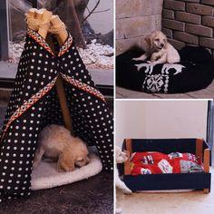 Light pink and black princess dog bed Designer pet bed Cat bed Custom made dog bed Personalized dog bed Dog house in pink Diy Dog Bed, Dog Clothes Patterns, Diy Stuffed Animals, Pet Beds, Cat Toys, Cute Dogs, Dog Cat, Ideas Bonitas, Crassula Ovata