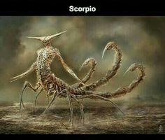 Zodiac monster / scorpio
