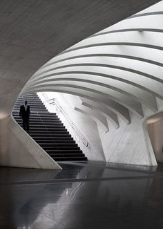 Liege Railway Station, by Santiago Calatrava, Liege, Belgium