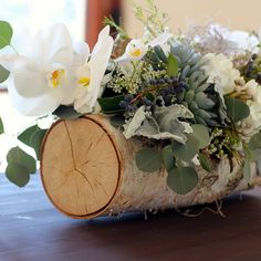 A birch log spilling with seeded eucalyptus, grey dusty miller, cedar foliage, ivory spray roses, and red hypericum berries with gold votives surrounding
