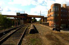 A Bloomgindale Railway, em Chicago (EUA), é uma estrada de ferro de quase cinco quilometros de extensão abandonada acima da movimentada cidade americana. Sua abdicação pela Canadian Pacific Railway, em 2001, deixou os trilhos cobertos de vegetação. Logo, eles tornaram-se populares como uma rota para corredores e ciclistas. Um projecto de restauração em breve deve transformar a antiga ferroviária em um parque moderno.