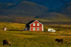 Photograph by Stuart Litoff.  A #red #farmhouse and #horses in southern #Iceland