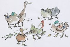 Över 1 000 bilder om Quirk: Inspired by Quentin Blake& Animals på . Duck Drawing, Water Drawing, Drawing Artist, Drawing For Kids, Small Drawings, Bird Drawings, Quentin Blake Illustrations, Duck Illustration, Les Rats