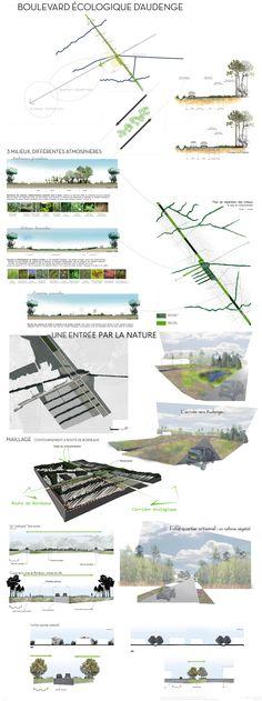Un boulevard écologique à Audenge - Bassin d'Arcachon