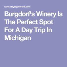 Burgdorf's Winery Is The Perfect Spot For A Day Trip In Michigan