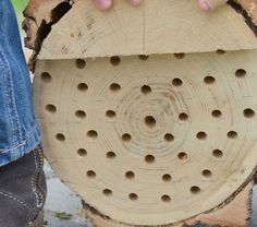 How To Make A Mason Bee Nest