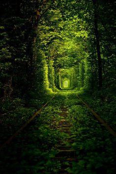 Túnel del Amor , que se encuentra en Ucrania , que solía ser sólo otra sección ferrocarril tren, pero con el tiempo se convirtió en uno de los lugares más románticos del mundo.  Another image