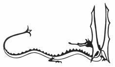 Smaug Sketch by J.R.R. Tolkien.