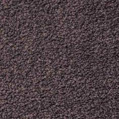 EMBRACE COMET Texture TruSoft® Carpet - STAINMASTER®