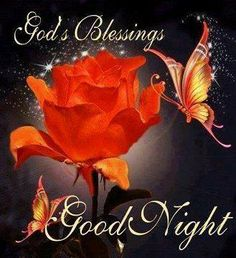 Good Night   Gods Blessings  for you  /  Gute Nacht Göttes Segen für Sie
