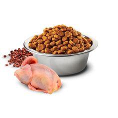 21.03.056 Pet Online, Quail, Quinoa, Coat, Dog Food Recipes, Pets, Sewing Coat, Quails, Dog Recipes