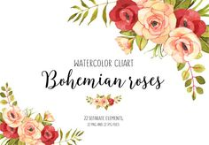 Roses watercolor boho clip art by AnnelyBlooms on @creativemarket