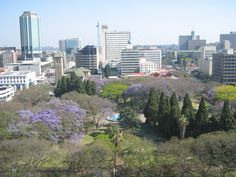 lovely skyline view of harare , zimbabwe . capital city