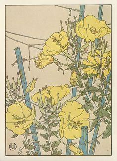 Yellow Poppies by Jeannie Foord ▫ Decorative Flower Studies Series / Pochoir Prints ▫ 1904